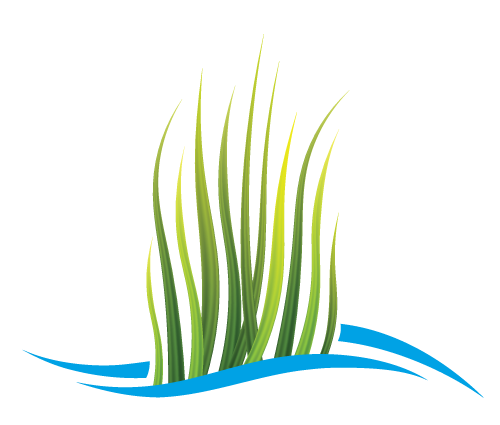 BayGrass icon