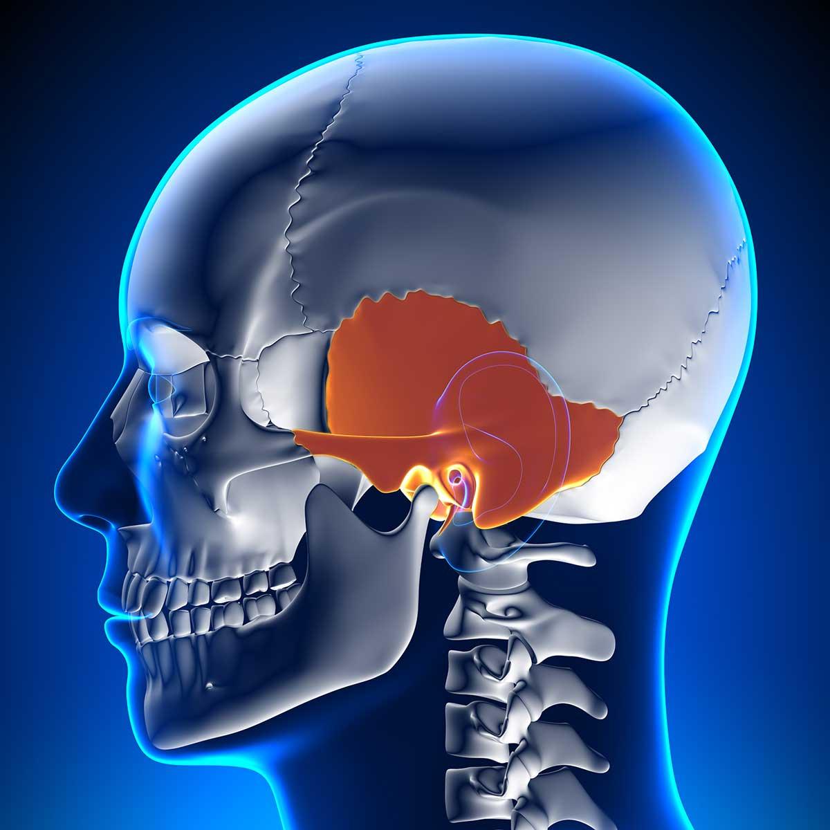 cranial techniques